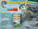 Tsunamis on the Move